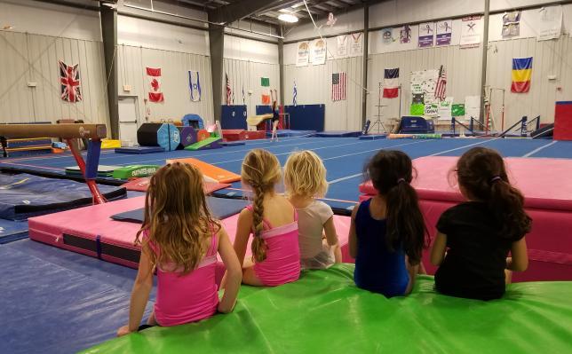 Arnold's Gymnastics